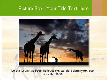 0000079916 PowerPoint Template - Slide 15