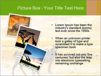 0000079916 PowerPoint Templates - Slide 17