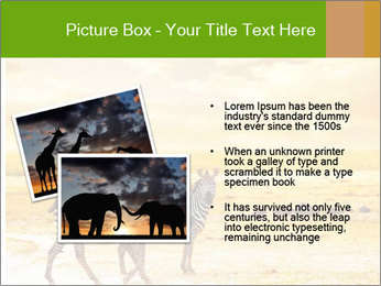 0000079916 PowerPoint Template - Slide 20