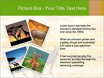 0000079916 PowerPoint Templates - Slide 23