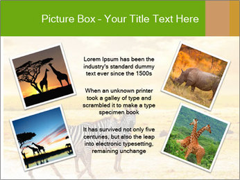 0000079916 PowerPoint Templates - Slide 24