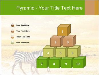 0000079916 PowerPoint Templates - Slide 31