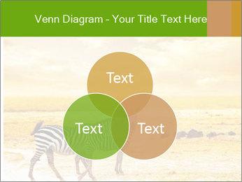 0000079916 PowerPoint Templates - Slide 33