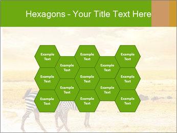 0000079916 PowerPoint Templates - Slide 44