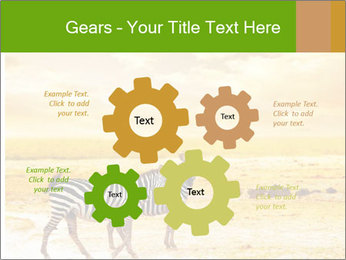 0000079916 PowerPoint Templates - Slide 47