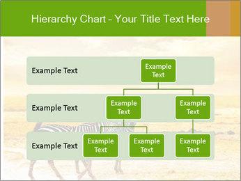0000079916 PowerPoint Templates - Slide 67