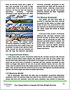 0000079918 Word Template - Page 4