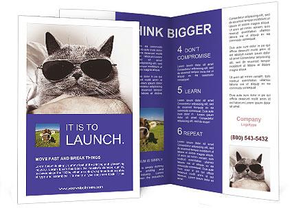 0000079922 Brochure Templates