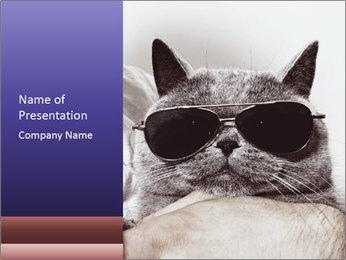 0000079922 PowerPoint Template - Slide 1