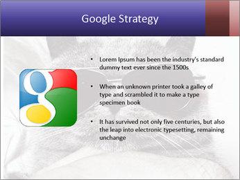 0000079922 PowerPoint Template - Slide 10