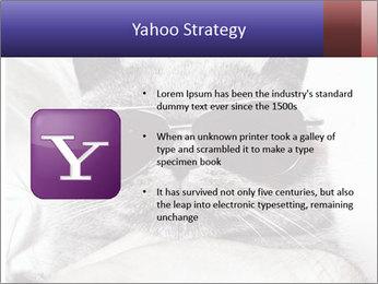 0000079922 PowerPoint Template - Slide 11