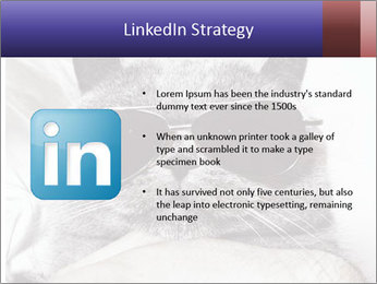 0000079922 PowerPoint Template - Slide 12