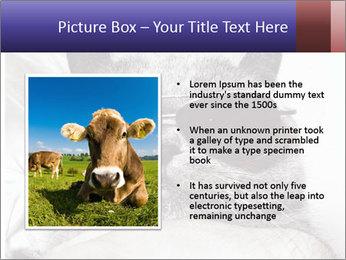 0000079922 PowerPoint Template - Slide 13
