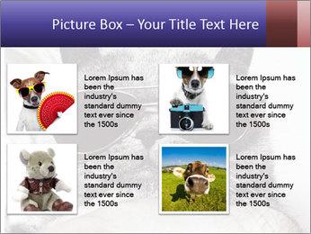 0000079922 PowerPoint Template - Slide 14