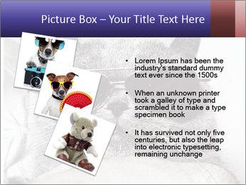 0000079922 PowerPoint Template - Slide 17