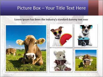 0000079922 PowerPoint Template - Slide 19