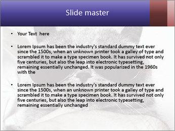 0000079922 PowerPoint Template - Slide 2