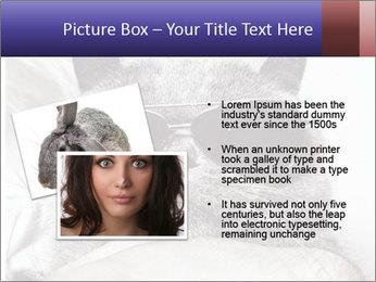 0000079922 PowerPoint Template - Slide 20