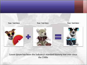 0000079922 PowerPoint Template - Slide 22