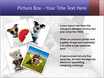 0000079922 PowerPoint Template - Slide 23