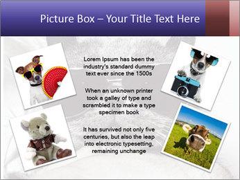 0000079922 PowerPoint Template - Slide 24