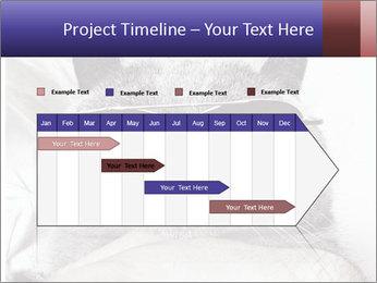 0000079922 PowerPoint Template - Slide 25
