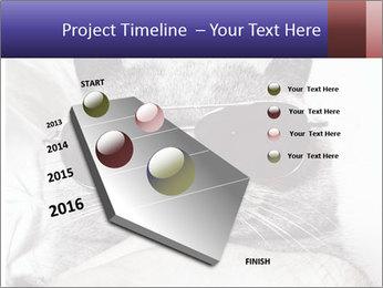 0000079922 PowerPoint Template - Slide 26