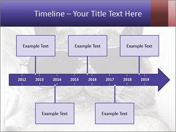 0000079922 PowerPoint Template - Slide 28