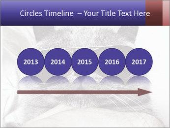 0000079922 PowerPoint Template - Slide 29
