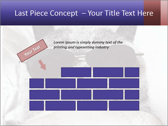 0000079922 PowerPoint Template - Slide 46