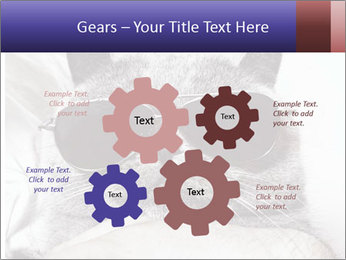 0000079922 PowerPoint Template - Slide 47
