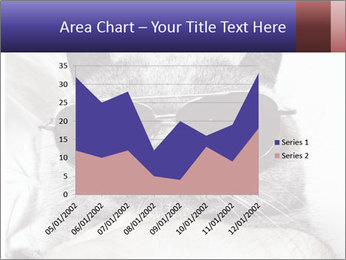 0000079922 PowerPoint Template - Slide 53