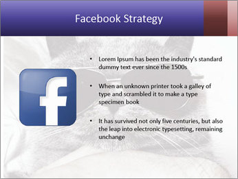 0000079922 PowerPoint Template - Slide 6