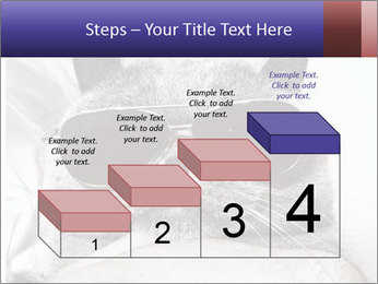 0000079922 PowerPoint Template - Slide 64