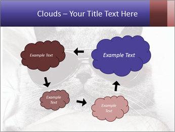 0000079922 PowerPoint Template - Slide 72