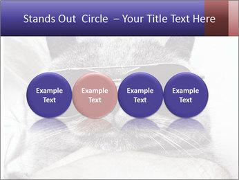 0000079922 PowerPoint Template - Slide 76