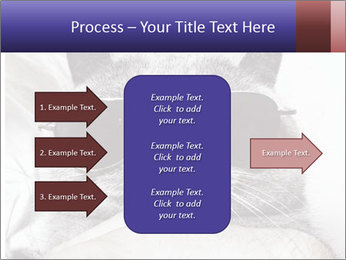 0000079922 PowerPoint Template - Slide 85