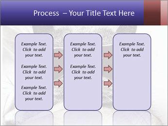 0000079922 PowerPoint Template - Slide 86