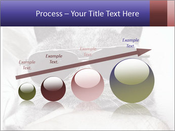 0000079922 PowerPoint Template - Slide 87