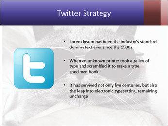 0000079922 PowerPoint Template - Slide 9