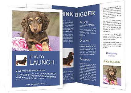 0000079932 Brochure Template