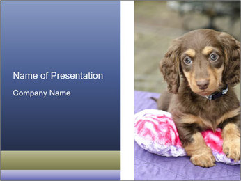 0000079932 PowerPoint Template - Slide 1