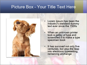 0000079932 PowerPoint Template - Slide 13