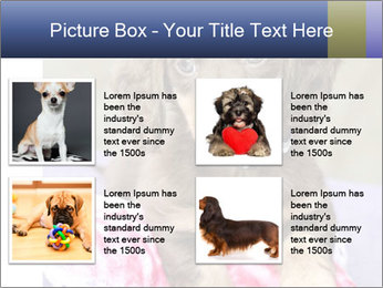 0000079932 PowerPoint Template - Slide 14