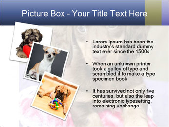 0000079932 PowerPoint Template - Slide 17