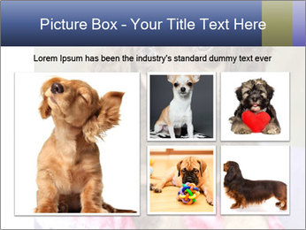 0000079932 PowerPoint Template - Slide 19
