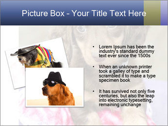 0000079932 PowerPoint Template - Slide 20