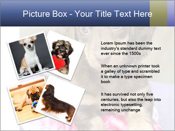 0000079932 PowerPoint Template - Slide 23