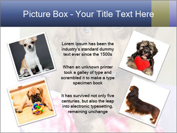 0000079932 PowerPoint Template - Slide 24