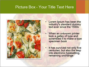 0000079933 PowerPoint Templates - Slide 13